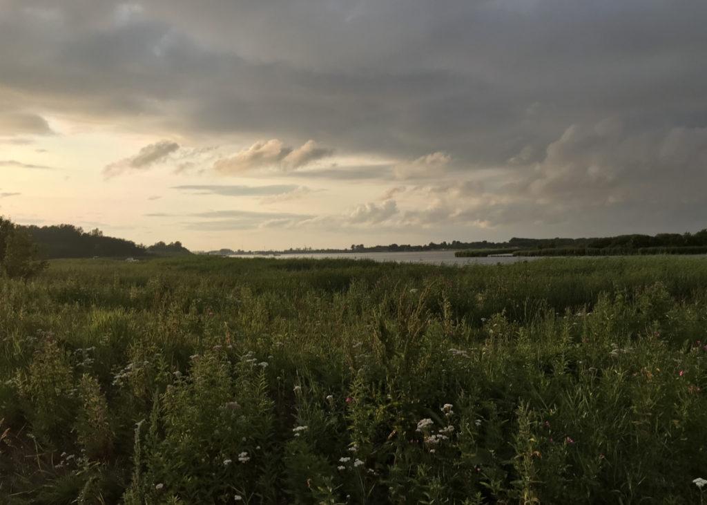 Ein Blick über das Lauwersmeer